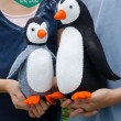 Poppy and Pip Penguins